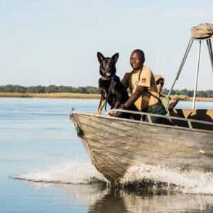 anti poaching team