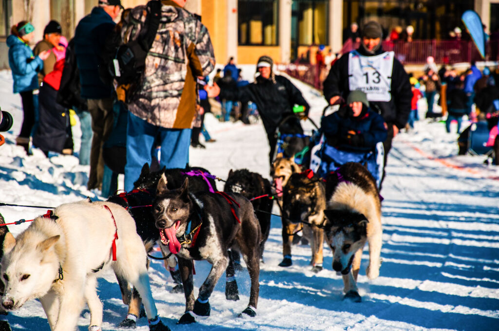 iditarod trail lenght