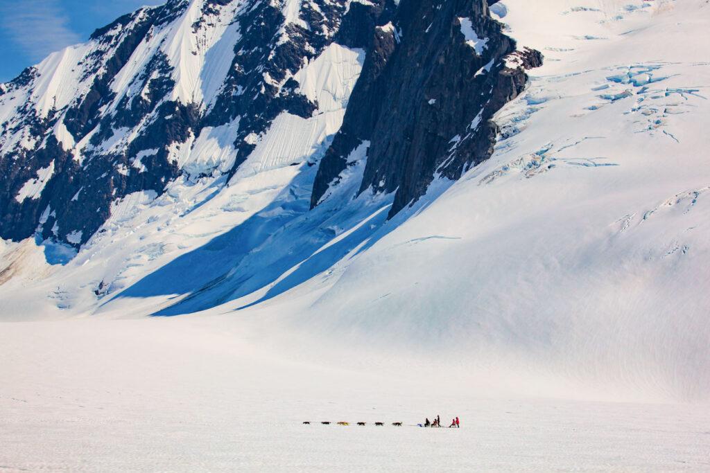 iditarod team in alaska