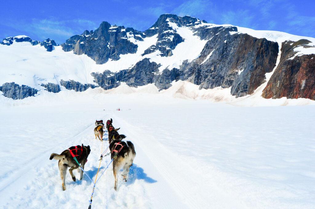 iditarod trail alaska
