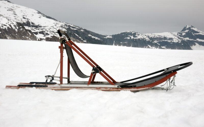 iditarod dog sled alaska