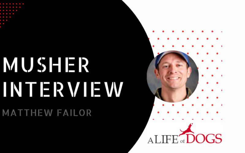 Matthew Failor Musher Interview